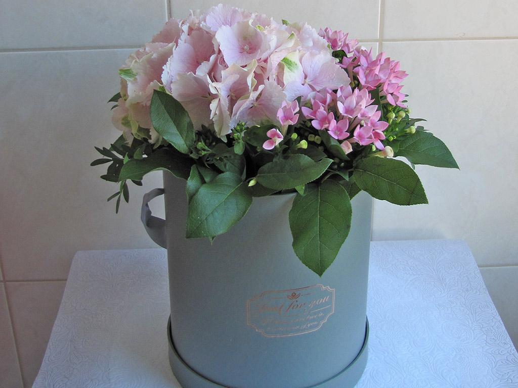 flower_boxy001